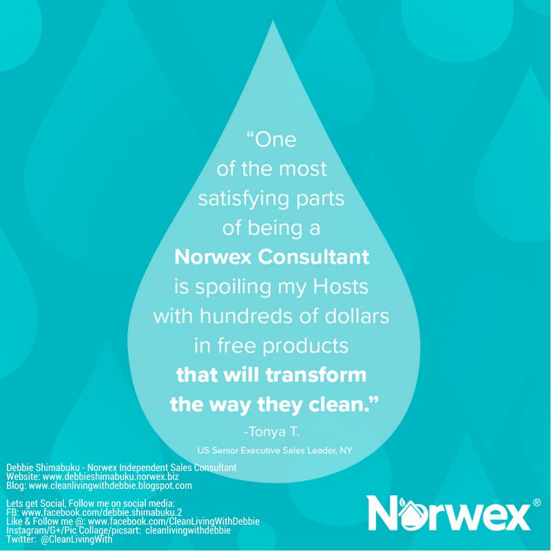 Norwex Bath Towels Classy April 60 Host Rewards