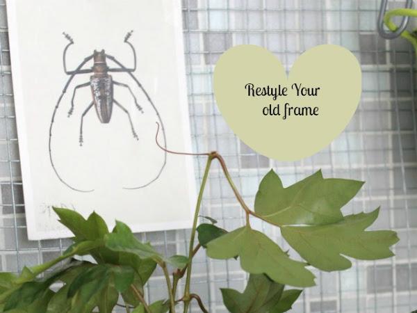 Blog Contest Viridea: la terza vita, tutta verde, di una cornice