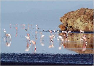 езеро Натрон