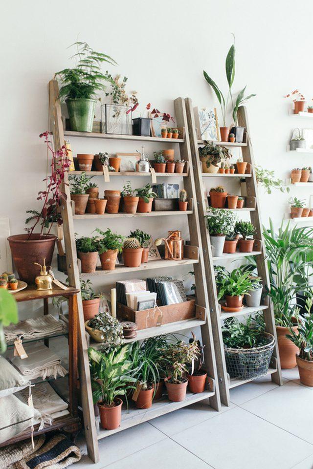 8 ideas del jardín