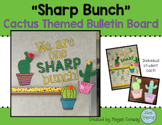 Sharp Bunch Cactus Display