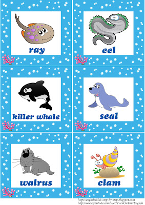 sea animals flashcards for learning english