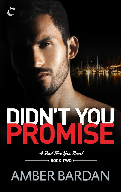Didn't You Promise Cover Reveal!