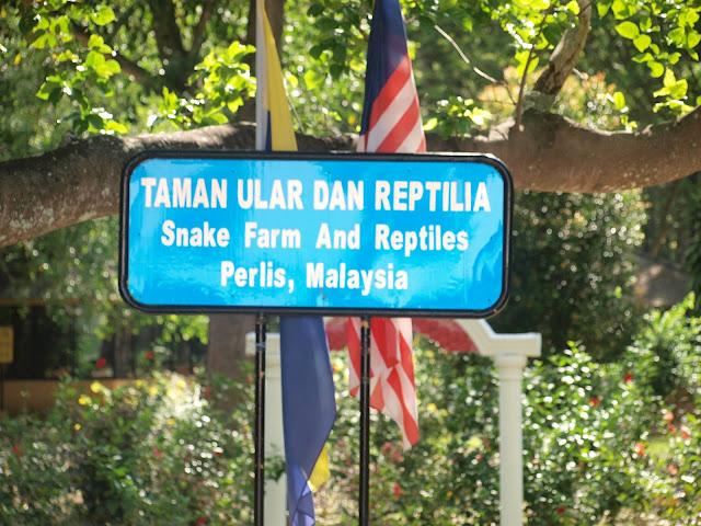 Salah satu daripada dua tempat perlindungan ular di Malaysia yang menempatkan pelbagai ular dan reptilia yang lain. Anda boleh melihat King Cobra yang menakjubkan