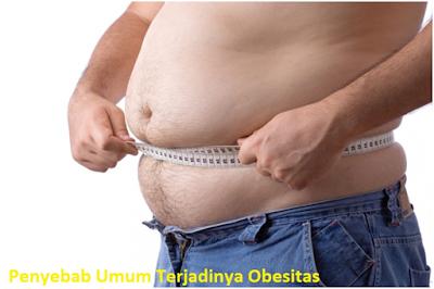 Penyebab Umum Terjadinya Obesitas (Kegemukan) Pada orang Dewasa