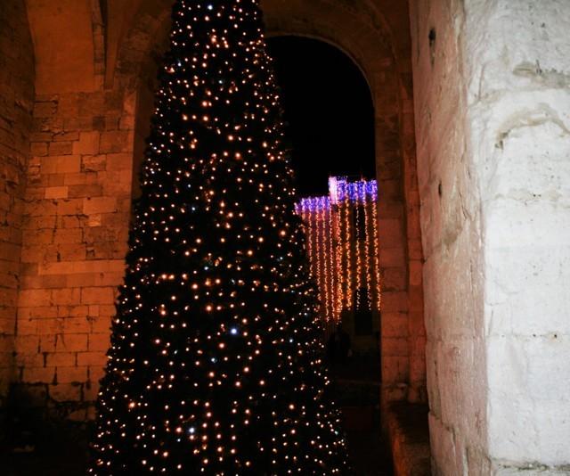 albero, albero di Natale, luci, luci colorate, luminarie,