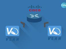 Menghubungkan Beberapa VLAN dan Switch dengan Router - Packet Tracer