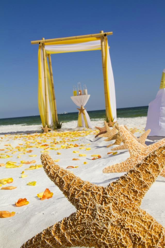 How to Plan a Beach Weddings in an Affordable Way
