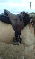 horse tack reviews, treeless saddle reviews, hoof boot reviews