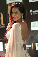 Prajna in Cream Choli transparent Saree Amazing Spicy Pics ~  Exclusive 055.JPG