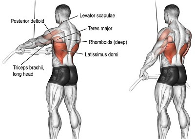 Straight Arm Lat Pull Down/Over