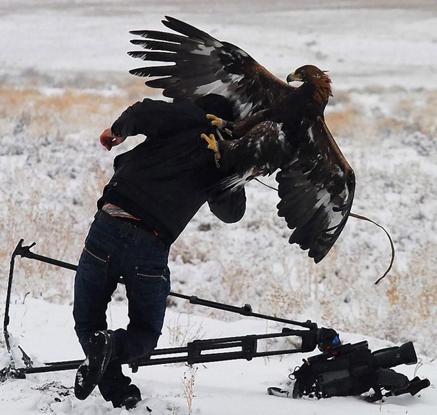 doğa-fotoğrafçılarının-unutulmaz-en-iyi_anlari_13
