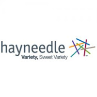 Hayneedle Black Friday