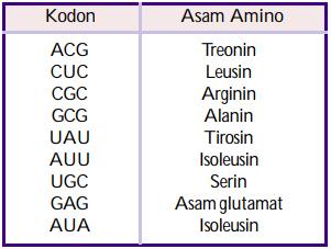 tabel translasi soal hasil asam amino