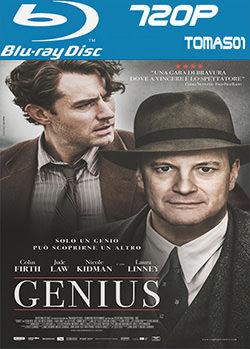 Genius (El editor de libros) (2016) BRRip 720p