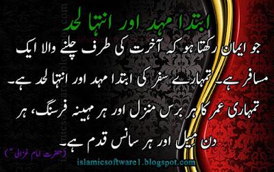 great sayings in urdu