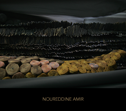 http://www.noureddineamir.com/