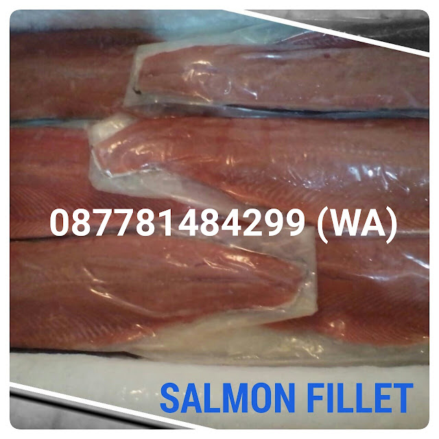 Jual Salmon Fillet