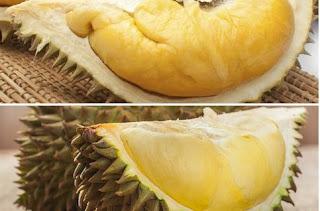 Pantangan Setelah Makan Durian