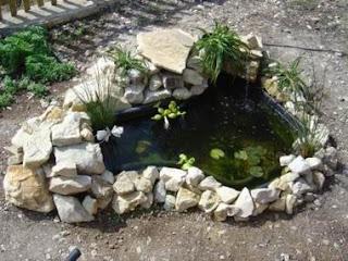 Aprender hacer bricolaje casero agosto 2011 for Hacer estanque para peces jardin