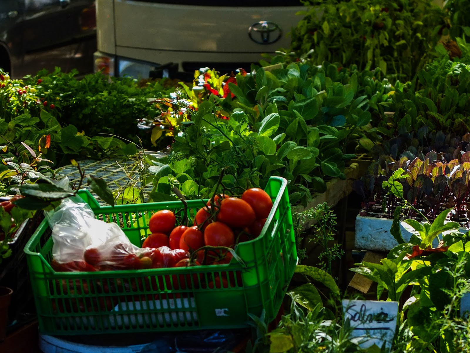 Crate of tomatoes and herbs with a Toyota Hiace at a food maket in Porto, Portugal.