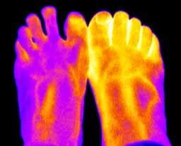 Shoe Findings Heels