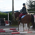 5 Exercises To Create a Fitter And Stronger Horse
