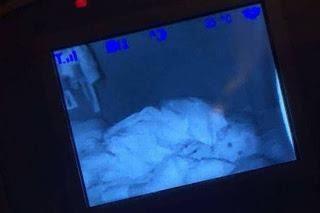 وضعت كاميرا مراقبة في غرفة نومها شاهد ماذا حصل !!