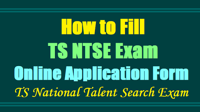 How to Fill TS NTSE Online Application Form, TS National Talent Search Exam 2017