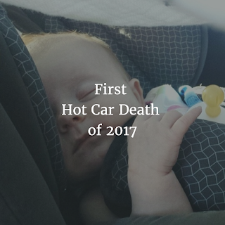 Samuel Schnall's death is the first confirmed death of a child left in a hot car in 0217.