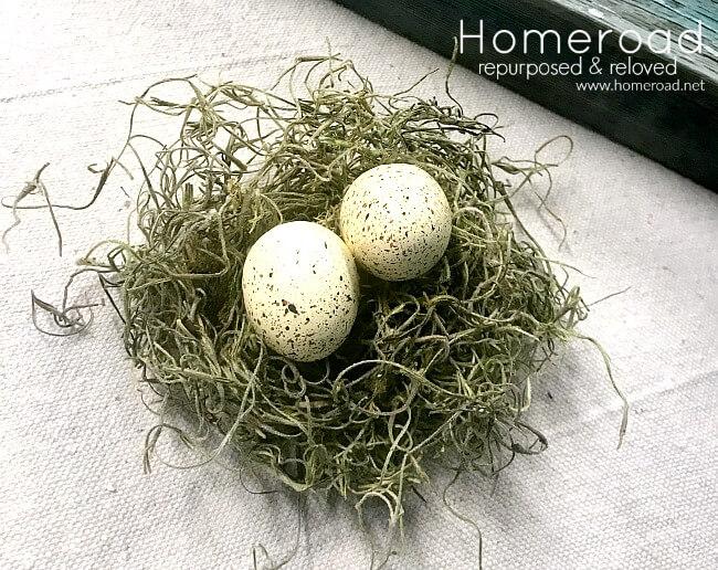 Spanish moss nest
