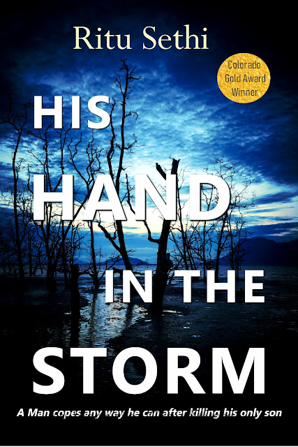 His Hand in the Storm (Chief Inspector Gray James Murder Mystery Book 1) by Ritu Sethi