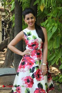 Nikki Galrani Looks supre cute and happy in Floral Dress at Velainu Vandhutta Vellaikaaran Press Meet