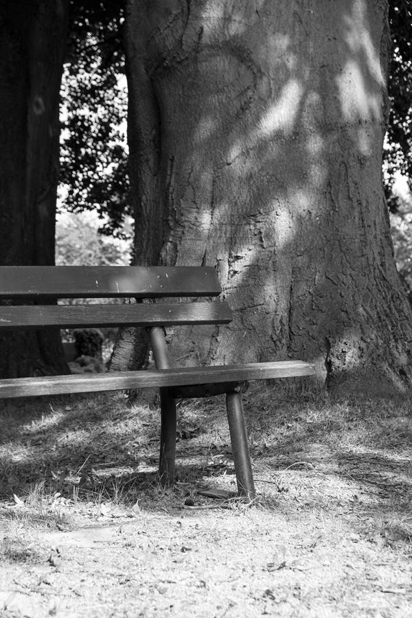 fim.works | Fotografie. Leben. Wohnen. | SchwarzWeissBlick No 33 | Friedhof Holzhausen
