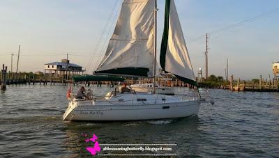sail boat, water