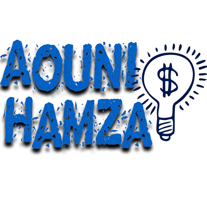 Mr Aouni Hamza  E-commerce expert