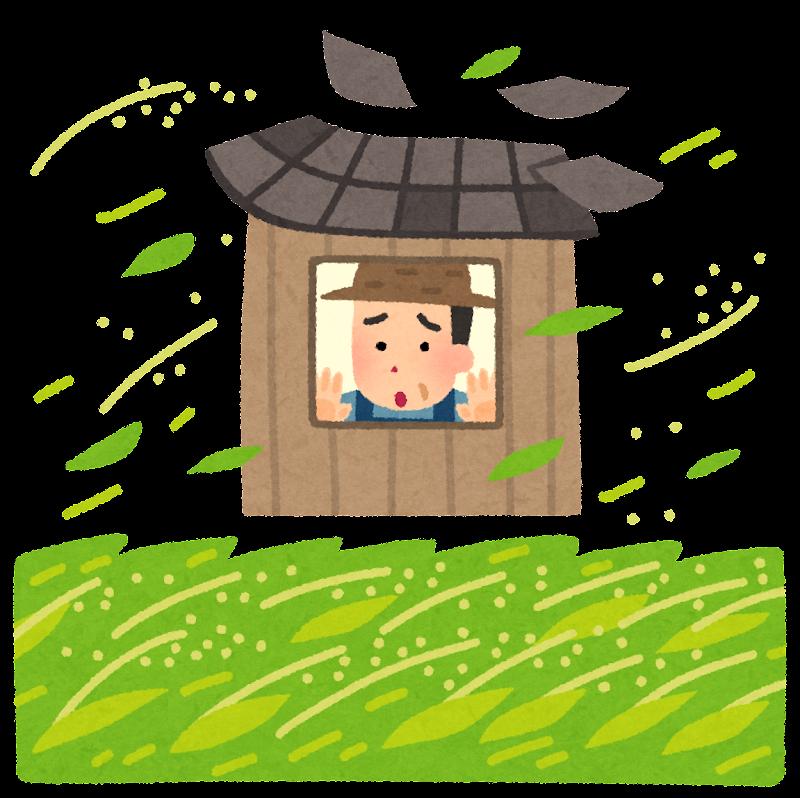 自然災害の心配をする米農家のイラスト   かわいいフリー素材集 いらすとや
