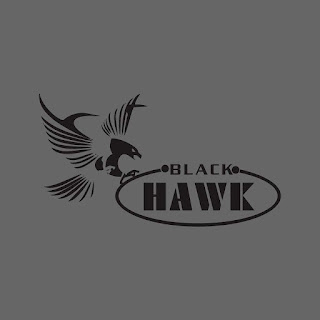 Black Hawk Flying Logo Free Download Vector CDR, AI, EPS and PNG Formats