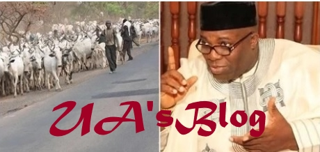 Doyin Okupe says ISIS may be behind so-called herdsmen attacks