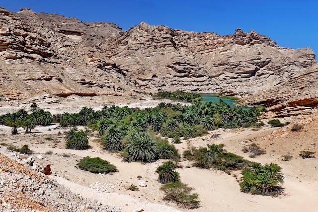 Oman, Roadtrip, Übersicht, Oase, Berge, Palmen, Wasser