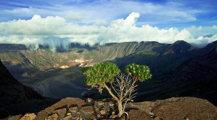 foto gunung tambora
