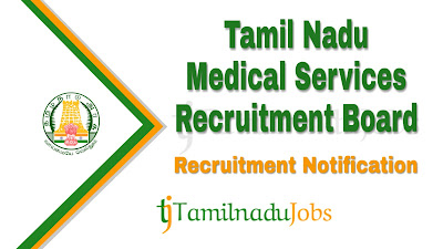 TN MRB Recruitment notification 2019, govt jobs for D.pharm , govt jobs for pharmacist
