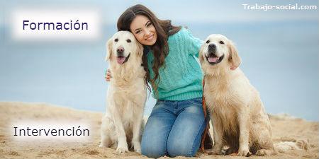 Los perros es procesos de intervención social