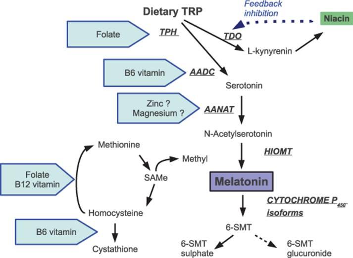 Intreprinderea dieta hipocalorica