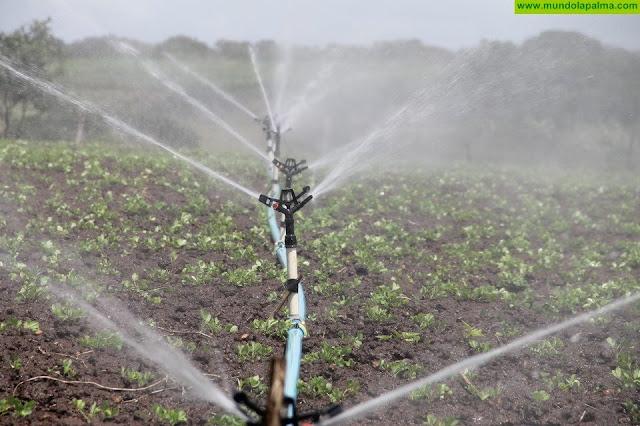 Coalición Canaria La Palma exige al Gobierno de Pedro Sánchez que cumpla ya con el pago de los 16 millones para riego agrícola