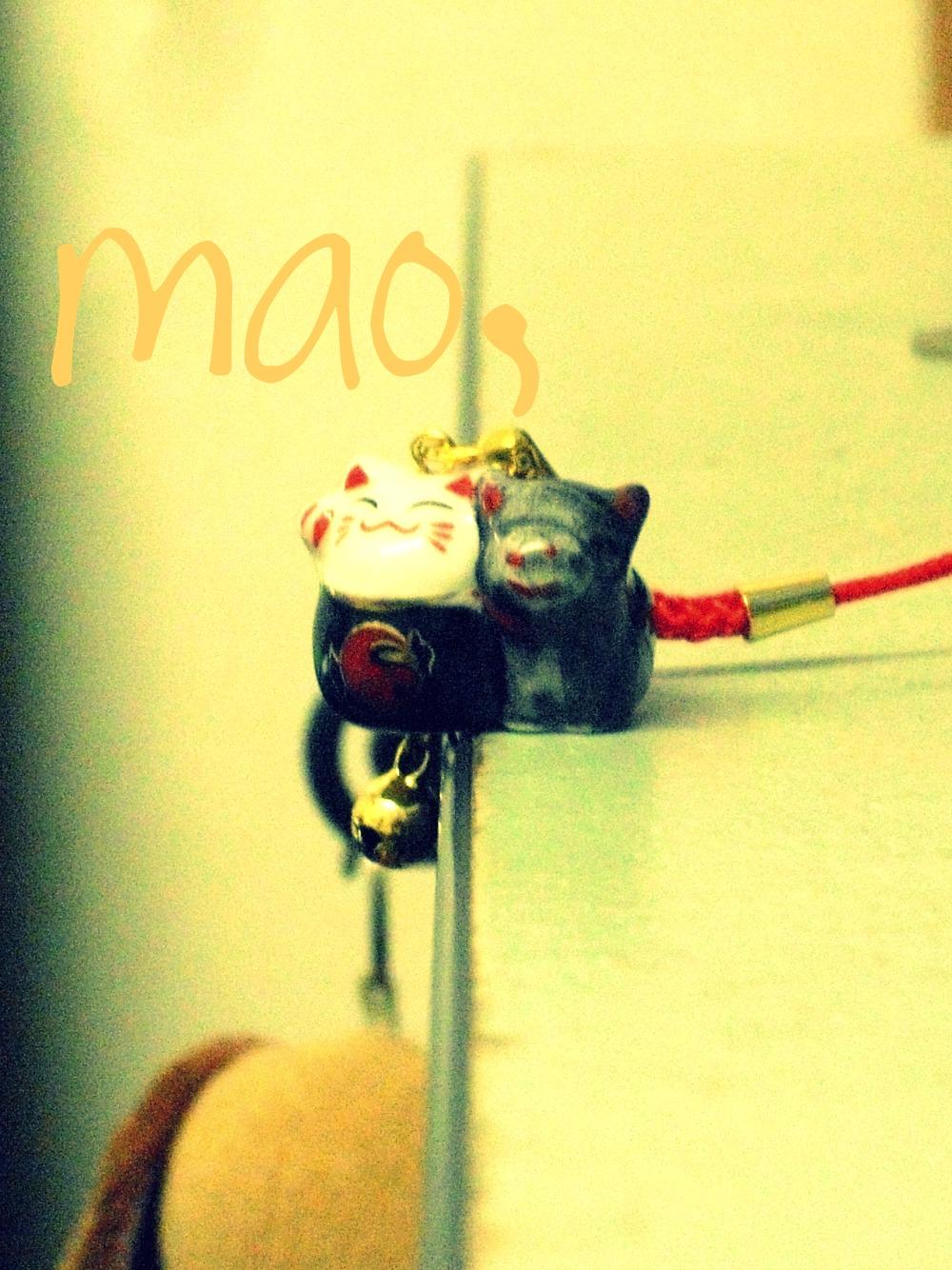 max ^^ | FISHMEATDIE
