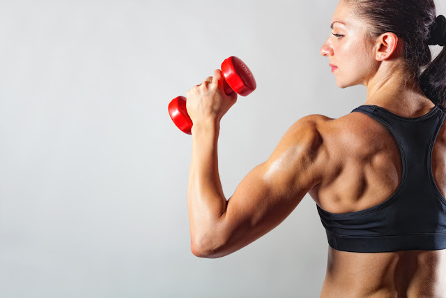 Weight Training Methods and Systems You Need to Know