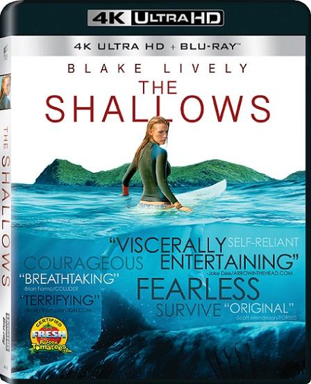 The Shallows 4K (Infierno Azul/Miedo Profundo) (2016) 2160p 4K UltraHD HDR BluRay 16GB mkv Dual Audio Dolby TrueHD ATMOS 7.1 ch