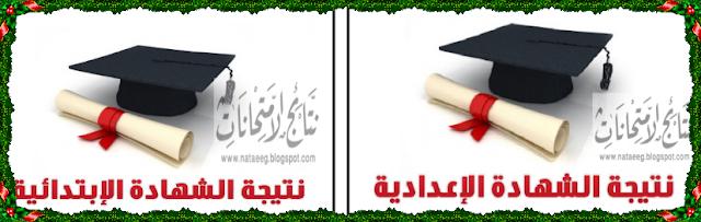 رابط مباشر لنتيجة الشهادة الابتدائيه والاعداديه بمحافظة بورسعيد 2017 أخر العام | مديرية التربيه والتعليم