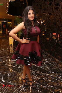 Manjima Mohan Pictures at Sahasam Swasaga Sagipo Audio Launch ~ Celebs Next